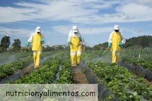 Las 12 Frutas y Verduras con más pesticidas y plaguicidas