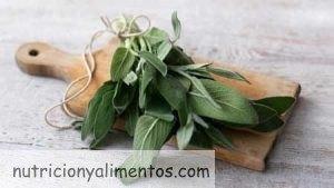 Salvia: Propiedades y beneficios